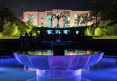 Serralves em Luz é uma das dez melhores exposições na Europa, diz o The Times