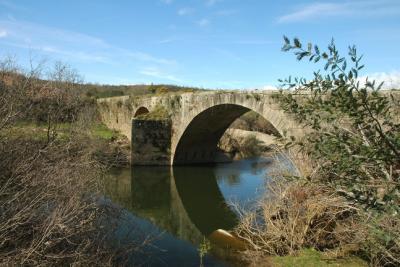 Ponte Romana de Pero Viseu