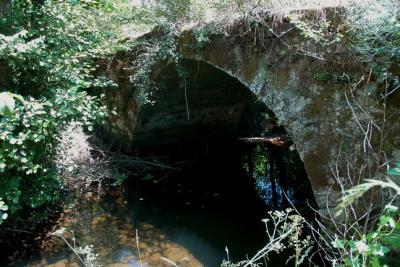 Ponte Romana da Torre de Dona Chama