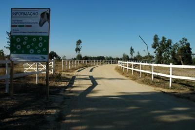 Reserva Natural do Cavalo do Sorraia
