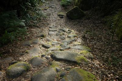 Geira - Estrada Romana