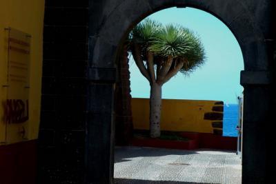 Forte de São Tiago ( Museu de Arte Contemporânea )