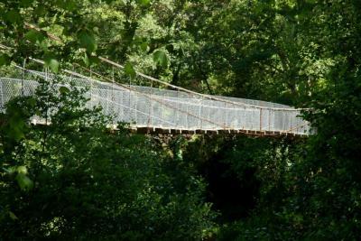 Ponte de Arame