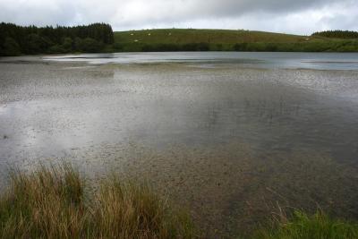 Lagoa da Lomba