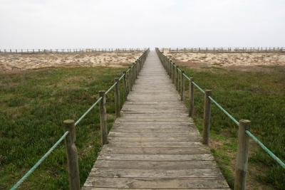 Praia das Pedras Brancas